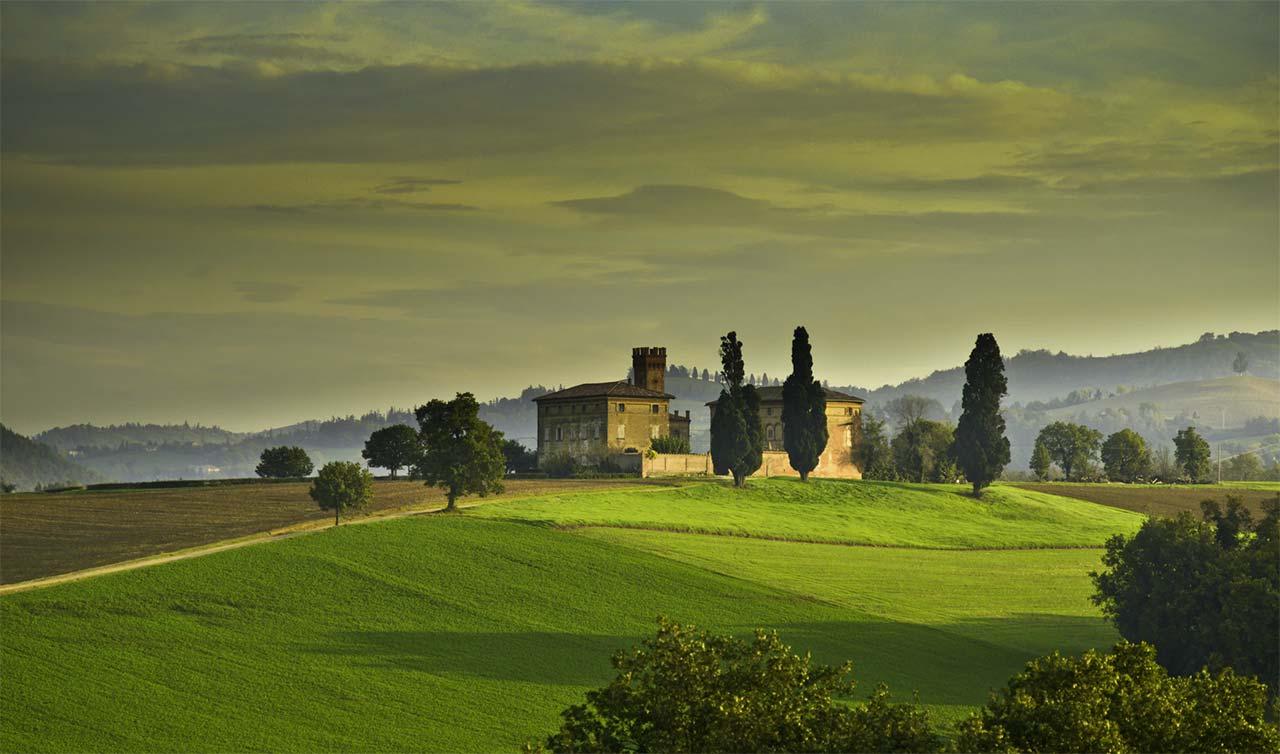 Dove trovare il tartufo in Emilia Romagna: calendario raccolta e zone più vocate