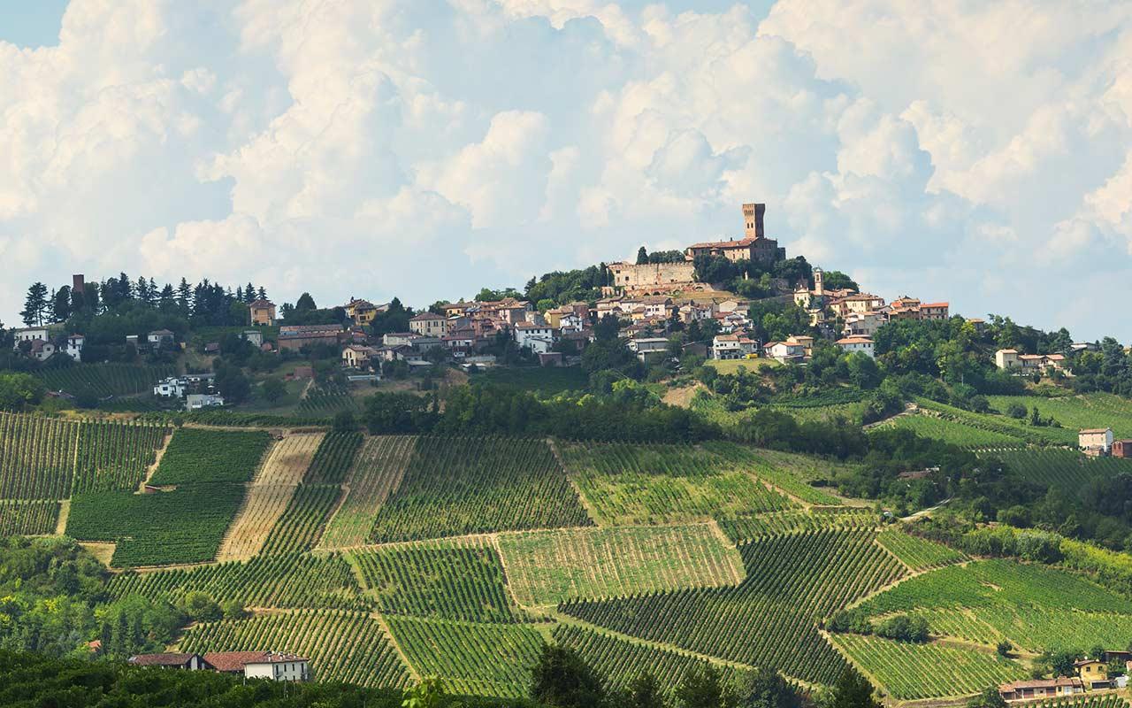Dove trovare il tartufo in Lombardia: calendario raccolta e zone più vocate