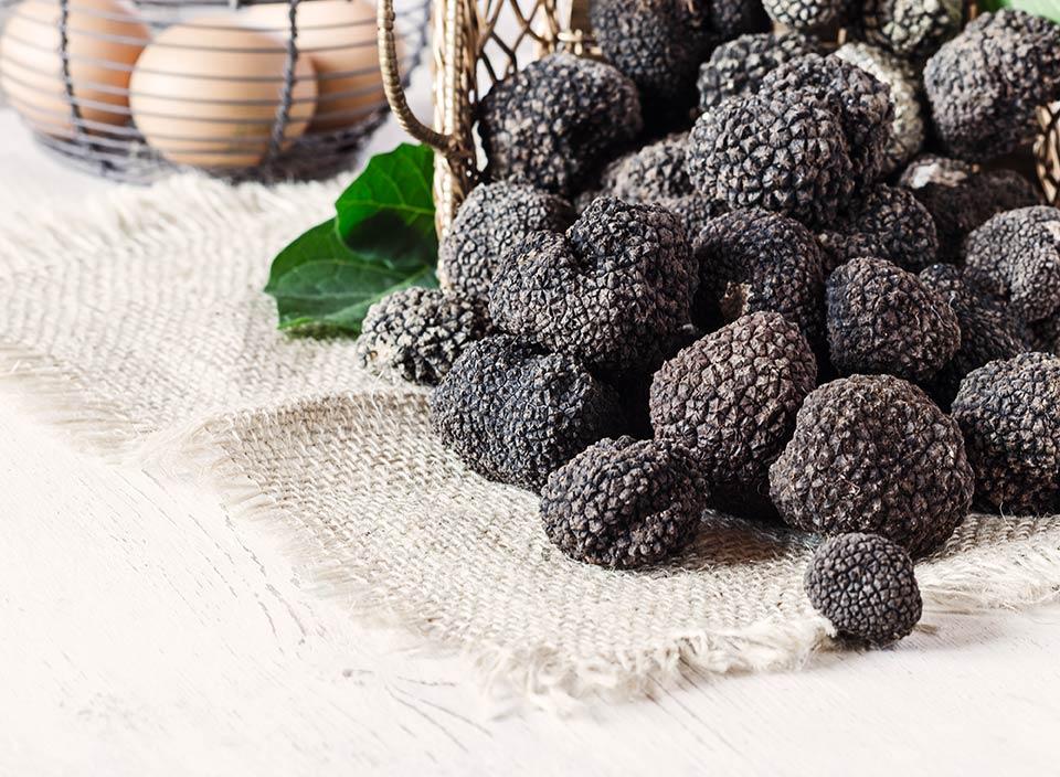 Tartufo nero: le sue squisite caratteristiche e come usarlo in cucina