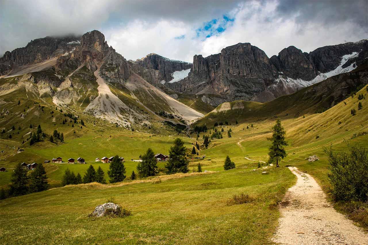 Dove trovare il tartufo in Trentino: calendario raccolta e zone più vocate