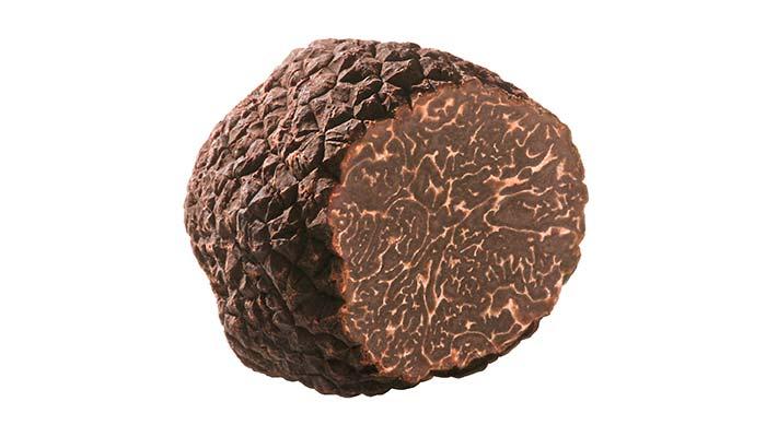tartufo nero invernale