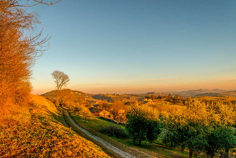 Langhe del Monferrato